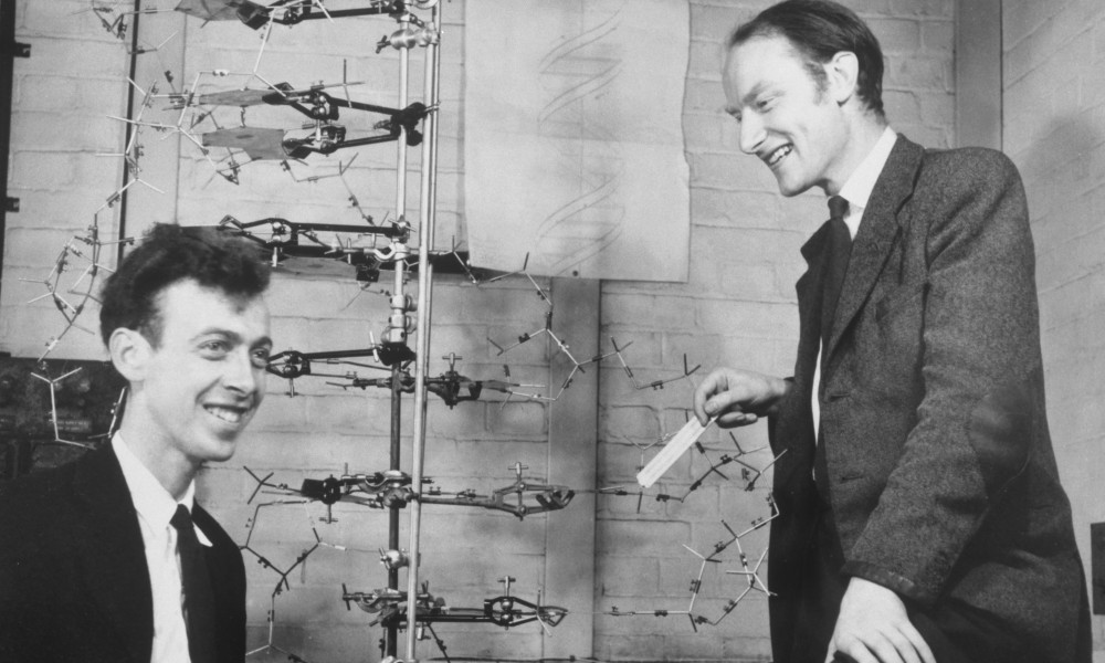 Watson and Crick with their DNA model