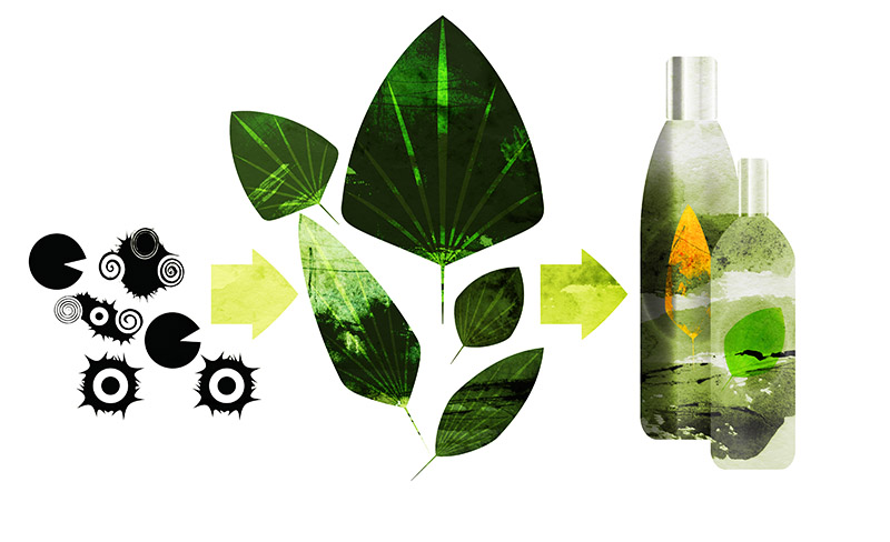 Bacteria convert plant material into chemicals that can be used to produce your shampoo bottle.