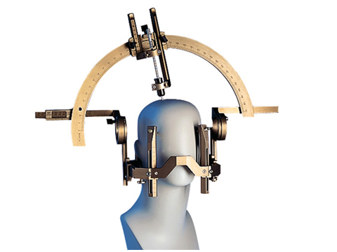 A narrow cannula is inserted into exactly the right place in the brain where the dopamin cells are placed.