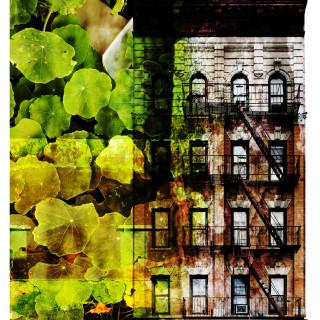 Green city art