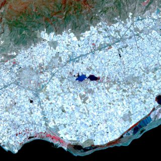 Vegetable cultivation under plastic in Spain