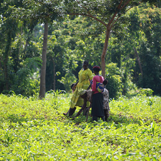 Villagers from Sere in the Tororo district in southeastern Uganda.