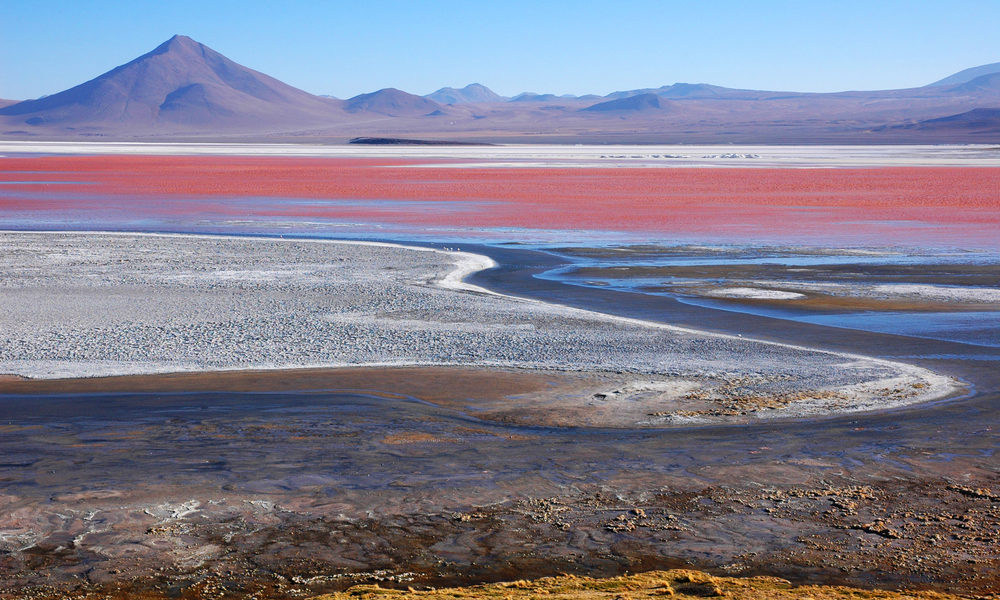 Laguna Colorada lays at a height of 4278 m in Bolivia. The red colour is created by the bacteria, which collect the red pigment internally.
